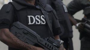 DSS-300x168
