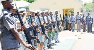 Customs-officers